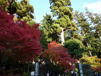 円覚寺入り口